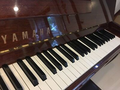 AU7900 • Buy Yamaha Upright Piano  P116CP Pick Up Graceville, QLD