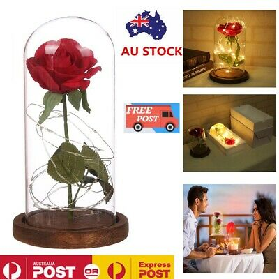 AU24.99 • Buy LED Light Enchanted Eternal Flower Rose In Glass Dome Valentine's Day Gift Decor
