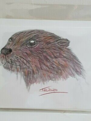 £2.99 • Buy Otter Original Hand Painted Greeting Card