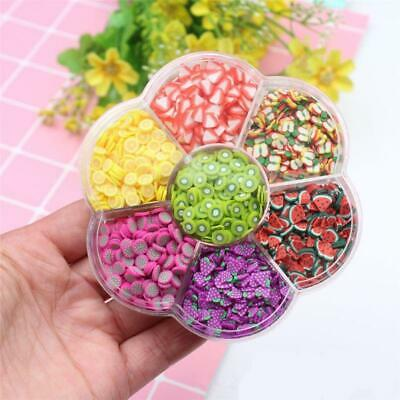 AU7.59 • Buy Assorted Fruit Slices 90g Wheel - Slime Supplies/Slime Acessories/Slime Add Ins
