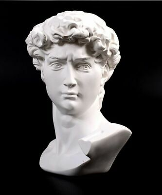 Michelangelo David Head Bust Statue Greek Mythology Sculpture Figurine Ornament • 14.90£