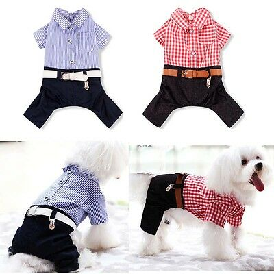 £4.99 • Buy Small Dog Puppy Cat Pet Stripe T Shirt Clothes Jacket Outfit Coat Summer/Winter