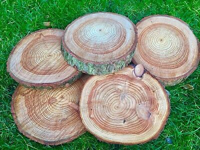 30-35cm Log Slice Wedding Table Centre Piece Rustic Cake Stand Tree Wood • 5.49£