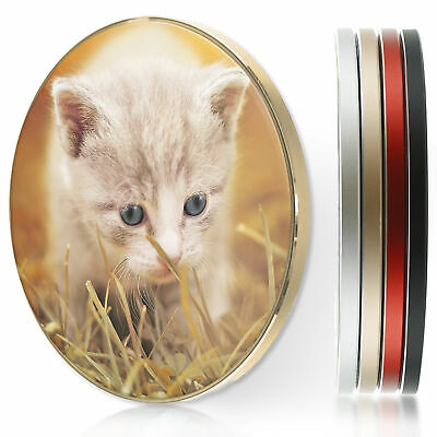 AU44.12 • Buy QI Wireless Charger For Apple Iphone 11/XS/8/Samsung S10/S9/S8- Cream Kitten Cat