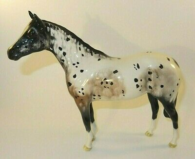 Royal Doulton 8  Appaloosa Stallion Horse Figurine Ex Beswick 1772B Excellent • 144.99£