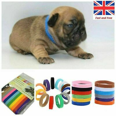 12color Whelp ID Dog Puppy Collars Whelping Newborn Collar Bands For Breeders UK • 4.08£
