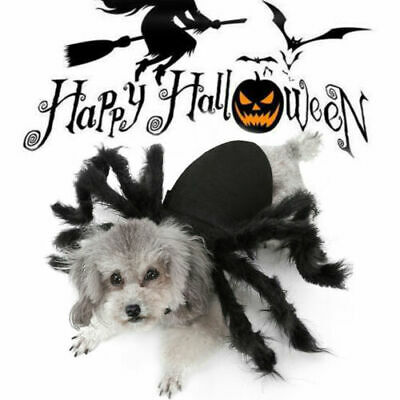 Halloween Pet Black Spider Costume Dog Cat Puppy Spider Cosplay Clothes Outfits • 6.97£