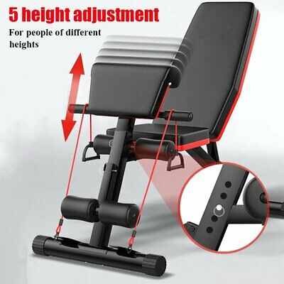 Sit Up Exercise Bench Adjustable Foldable Dumbbell Training Sit Up Weight Bench • 67.99£