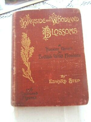 Wayside And Woodland Blossoms - Edward Step 1895 • 10£