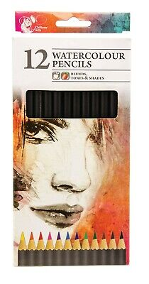 12 Watercolour Artist Pencils For Drawing Painting Sketching Art Water Colour UK • 2.49£