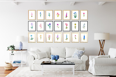 45 Botanical Flower Prints / Pictures Living Room Decor Plants  Wall Art • 4.95£