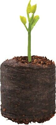Coir Propagation Pellets Grow Blocks Peat Free Eco Friendly Compost • 5.50£
