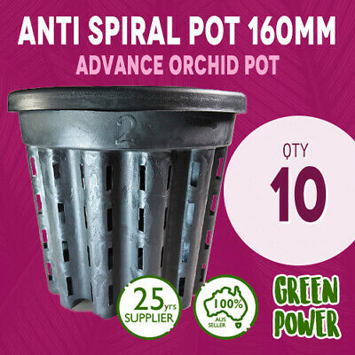 AU26.95 • Buy 16x14 Anti Spiral Pot 2L Vaso Italy Great For Advance Orchids Aerial Root 10pcs