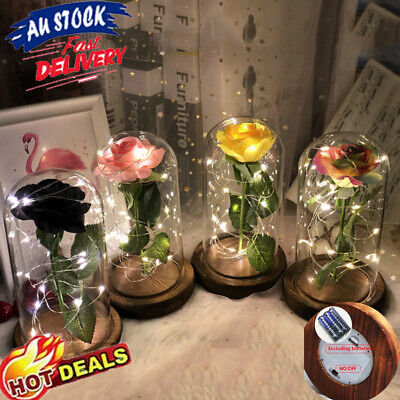 AU27.98 • Buy LED Light Enchanted Rose In Glass Dome Decoration Valentine's Day Gift Girl