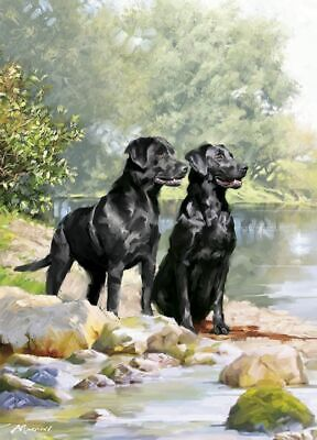 Birthday Card - Black Labrador Dogs Pair - Country Cards Quality NEW • 2.69£