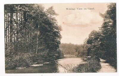 Woking - View On The Canal - Posted 1909 - Eltons Library, Woking • 3£