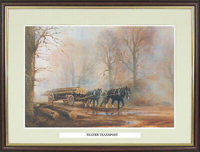 Shire Horse Picture  The Timber Drag  By David Weston - NGNSWX11 • 34£