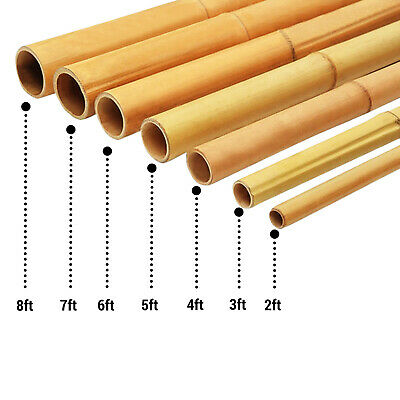 Abaseen Bamboo Canes Strong Heavy Duty Professional Garden Plant Support Sticks 2FT 3FT 4FT 5FT 6FT 7FT 5, 2ft, 6-8mm
