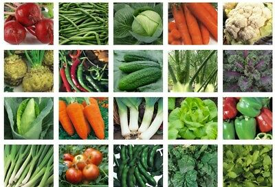 £1.99 • Buy Herb & Vegetable Seeds Collection 100+ Varieties Save Up To 20% With Multi-Buy