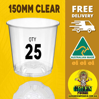AU29.95 • Buy 25x Teku Plastic Clear Pots150mm - Great For Seedlings Herb Orchids Uv Resistant