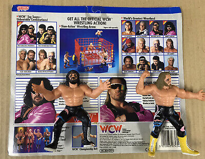 $ CDN345.43 • Buy WCW GALOOB LOOSE FABULOUS FREEBIRDS With TWIN PACK BACKING CARD UK EXCLUSIVE