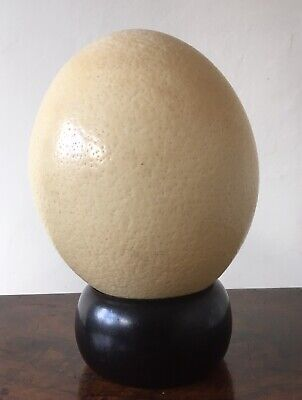 £20 • Buy Vintage Blown Ostrich Egg On Wooden Stand