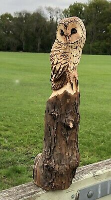 £75 • Buy Bespoke Chainsaw Owl Carvings In Wood OW1302