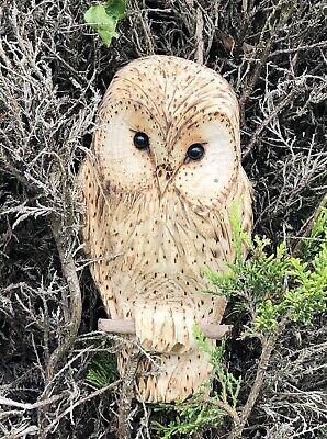 £35 • Buy Bespoke Chainsaw Owl Carvings In Wood OW1310