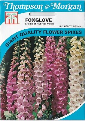 £1.89 • Buy Thompson & Morgan - Foxglove Excelsior Hybrids Mixed - Average 2500 Seeds
