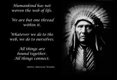 £5 • Buy Native American Indian Poster. Quote Very Motivational. Free Post 210 X 297mm