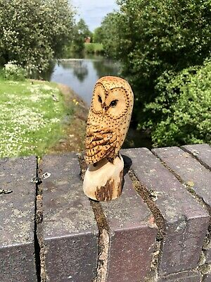 £25 • Buy Bespoke Chainsaw Owl Carvings In Wood OW1326