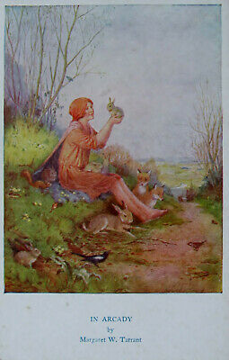 £1 • Buy An Early Colour Postcard. By Margaret Tarrant. In Arcady