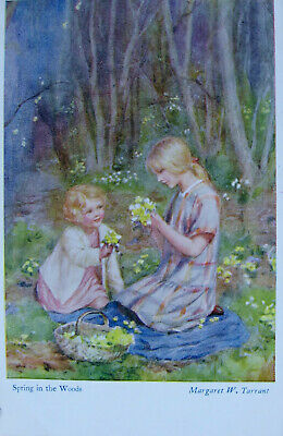 £1.50 • Buy     A Vintage Colour Postcard. By Margaret Tarrant. Spring In The Woods.