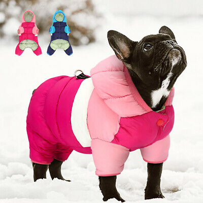 £9.99 • Buy Small Dog Coats For Winter Chihuahua Clothes Warm Pet Down Jacket Hoodie XXS-L