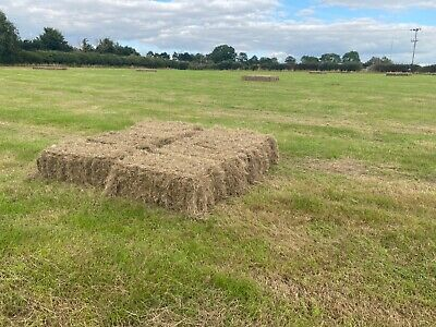 £3.50 • Buy Small Hay Bales Lutterworth Cut/baled Aug 2021