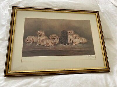 £40 • Buy Limited Edition Dog Print Picture Painting Signed Framed Labrador Puppies