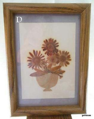 Framed Pressed Dried Flowers Spring Bouquet 5.5 X 7.5 Completed Size D • 16.00$