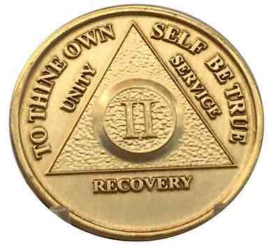 $1.70 • Buy 2 Year AA Coin Medallion Alcoholics Anonymous Serenity Prayer Chip Two Bronze