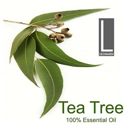 AU9.50 • Buy Tea Tree Essential Oils - 100% Pure Grade- 10ml, 50ml, 100ml, 500ml, 1 Litre