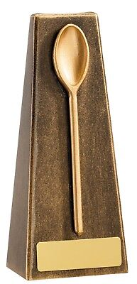 """16.5 cm  /""""Wooden Spoon/"""" Award Multi Trophy Free Engraving upto 30 Letters"""