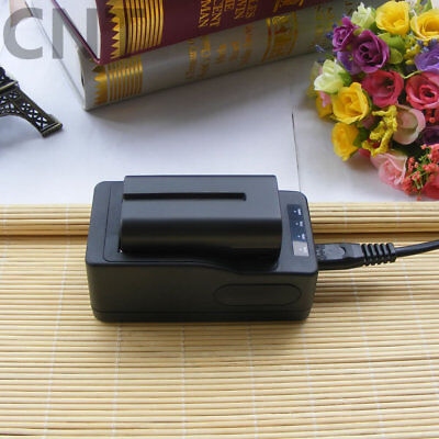 AU40.65 • Buy 2 Battery For Sony NP-F550 NP-F330 NP-F750 NP-F960 F970 F770 / Rapid Charger