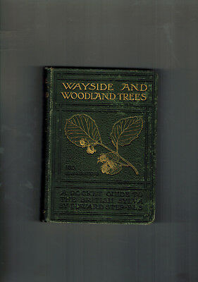 EDWARD STEP Wayside And Woodland Trees - 1904 First Edition • 34.99£