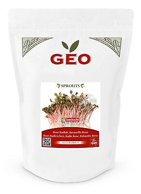 £7.95 • Buy GEO Organic China Rose Seeds For Sprouting (500g Pack)