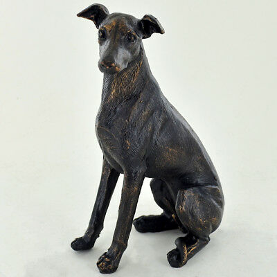 Large Greyhound Dog Sitting Painted Bronze Resin Sculpture Gift Whippet 39419 • 19.95£