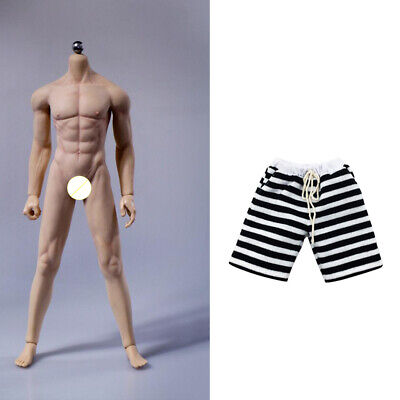 $71.59 • Buy 1/6 Scale Male Figure Seamless Muscular Body & Short Pants For 12'' Enterbay
