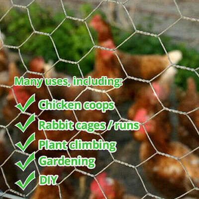 £6.24 • Buy Galvanised Wired Mesh Garden Fencing Chicken Coop Netting Plant Climbing Wire 5m