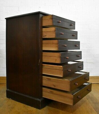 Antique Specimen Wellington Chest Of Drawers - Collectors Display Cabinet Chest • 495£