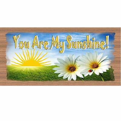 Romantic Wood Signs -You Are My Sunshine GS 1594 GiggleSticks Wood Plaque • 28.47£