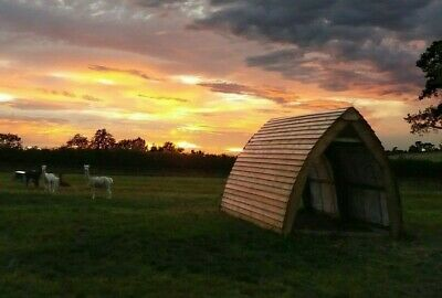Alpaca Field Shelter 4.8m X 3m X 3m Mobile Gothic Arch Stable Ponies Llama Sheep • 1,998£