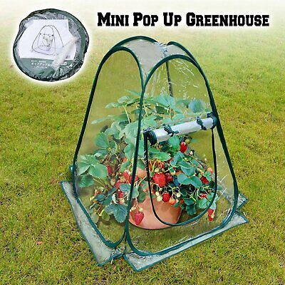 Mini Tent Pop Up Greenhouse Transparent PVC Foldable Flowerpot Cover DURABLE NEW • 18.50£